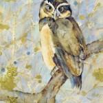 silver owl (c)