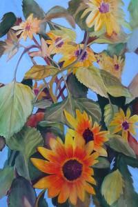 Karen's Sunflowers c