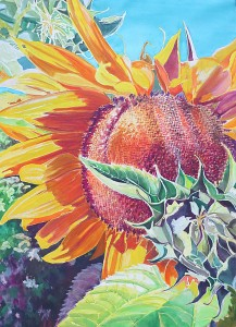 Sun Flower (2)