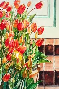 Tulips-Linda Curtis