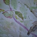 loose sparrow1